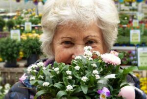 Are you looking for fun and recreational activities for the elderly